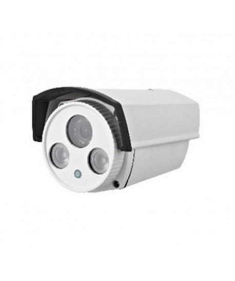 Camera supraveghere cu IP EJC130N